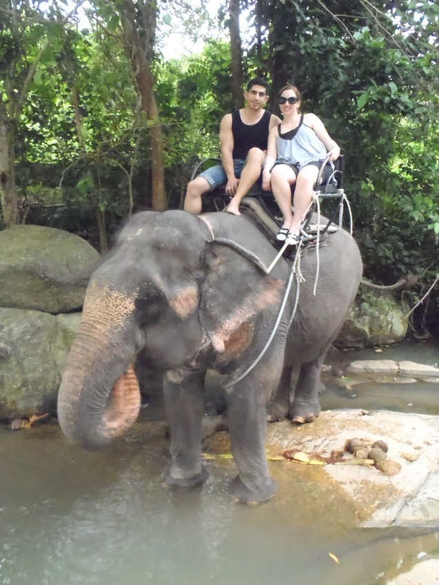 Riding An Elephant In Koh Samui Thailand